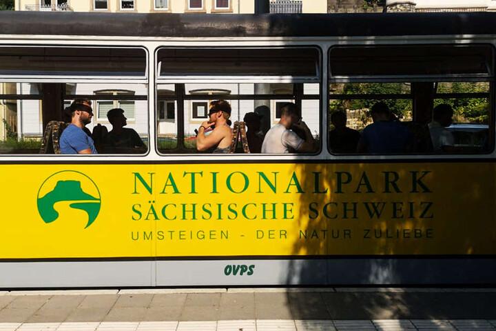 Mit der Kirnitzschtalbahn ging's zum Beuthenfall.