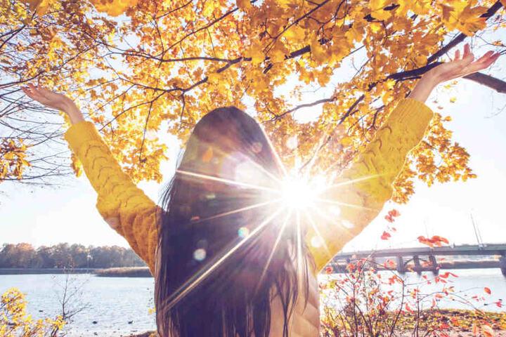 Von Freitag bis Sonntag heißt es: Die Sonne genießen! (Symbolbild)