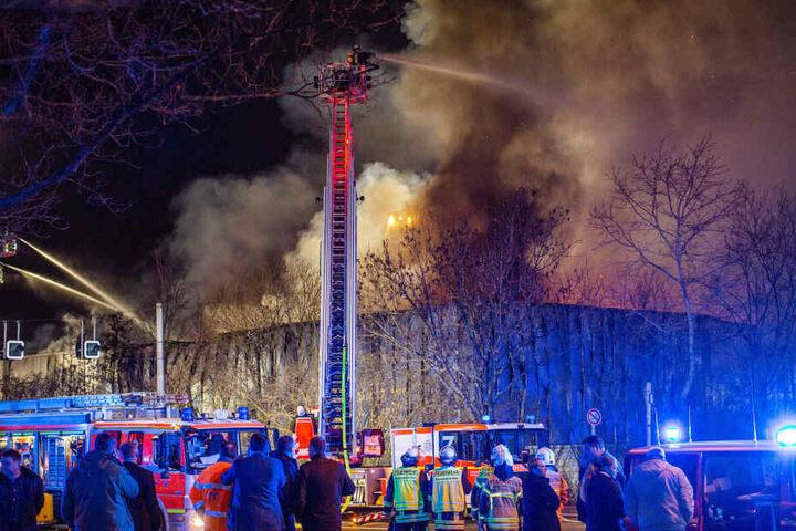 Der Großbrand einer Halle der Düsseldorfer Messe mit einem Millionenschaden ist durch Brandstiftung verursacht worden.