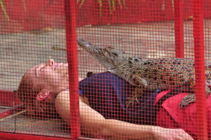 Doreen wurde ein Krokodil auf den Bauch gepackt.