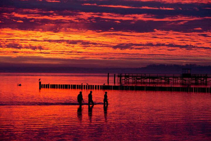 Auch auf Rügen erfreuten sich die Menschen über das farbenfrohe Naturschauspiel.
