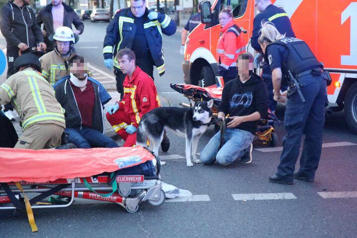 Der Hund musste später von einem Polizisten betreut werden.