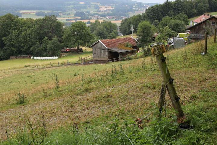 Bei Gleißenberg im Landkreis Cham in Bayern haben sich schreckliche Szenen abgespielt.