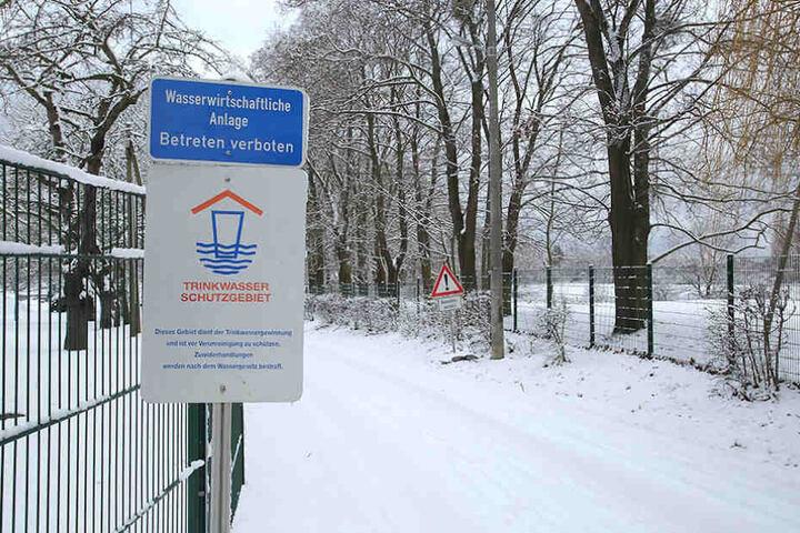 Die Stadt will ein striktes Pferdeverbot im Wasserschutzgebiet der Zonen 1 und 2 durchsetzen.