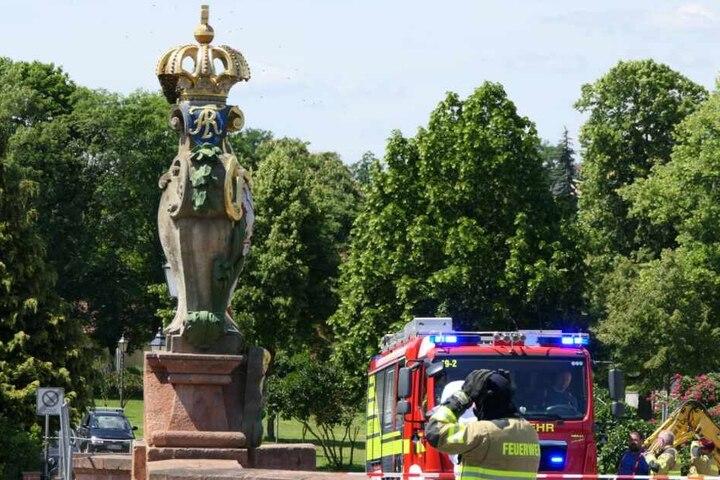 Die Feuerwehr unterstützt aktuell einen Imker dabei, die Tiere umzusiedeln.