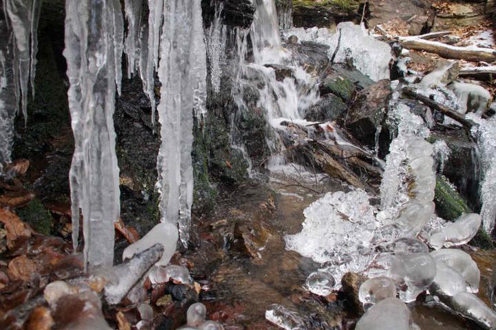 Die Kälte hat die Heslacher Wasserfälle in Stuttgart in eine verwunschene Eislandschaft verwandelt.