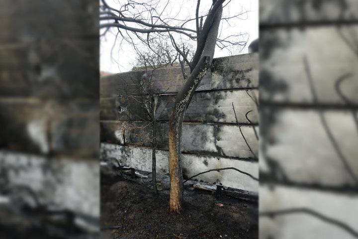 In Brand gesetzter Abfall hatte das Feuer ausgelöst.