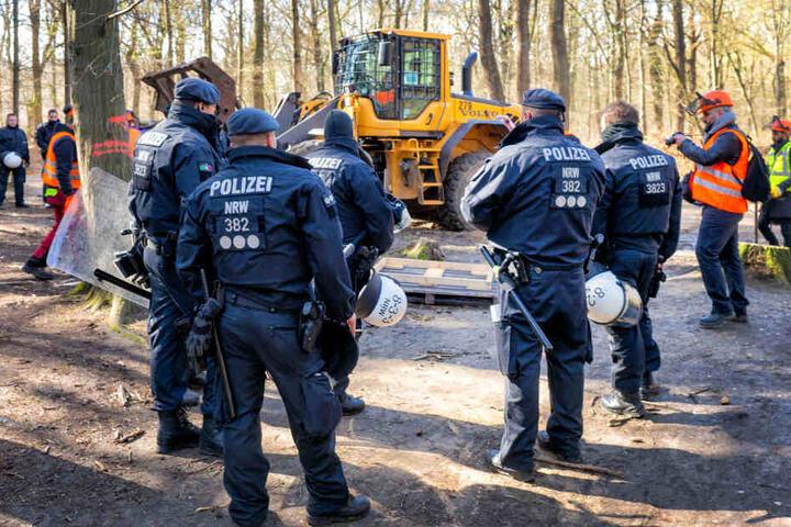 Die Polizei muss regelmäßig im Hambacher Forst RWE-Mitarbeiter schützen.