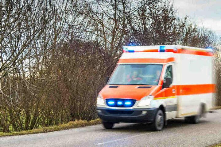 Rettungskräfte brachten das schwerverletzte Mädchen ins Krankenhaus, konnten sie aber nicht mehr retten. (Symbolbild)
