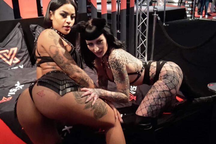 Die Erotik-Stars zeigen was sie haben.