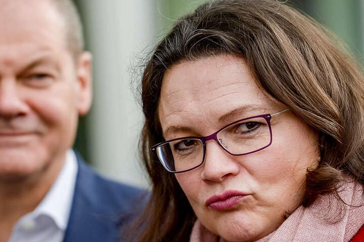 Andrea Nahles versichert, dass bei dem SPD-Mitgliedervotum kein Hund abstimmen wird.