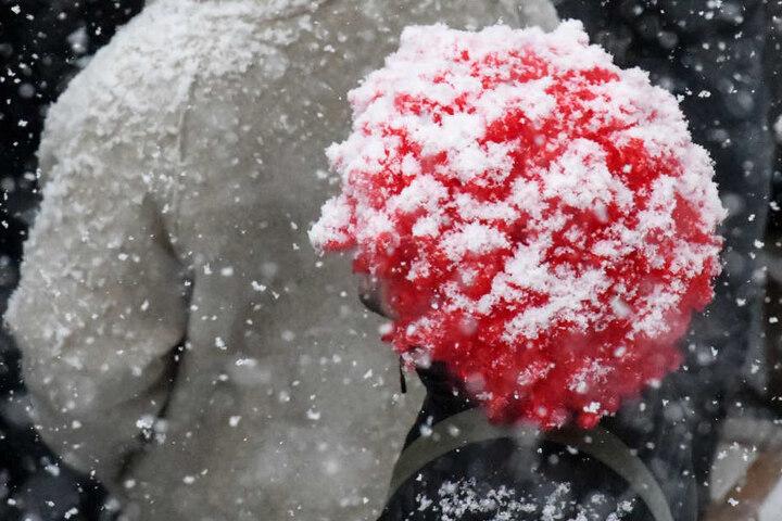 Eine dicke Perücke kann bei Kälte sehr praktisch sein.