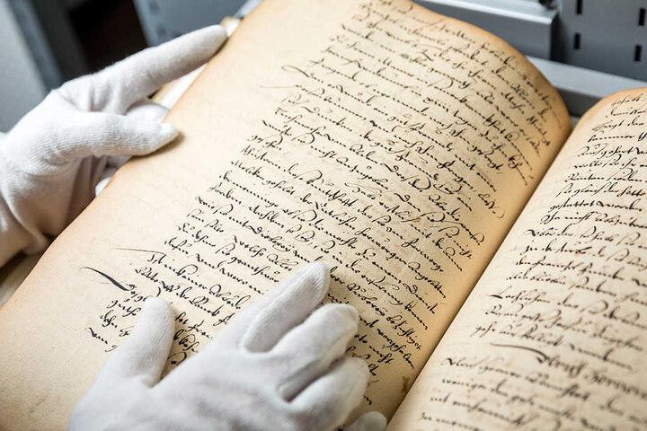 Knapp ein Jahr brauchte Ettelt, um die 349 historischen Blätter aus dem  Neuhochdeutschen zu transkribieren.