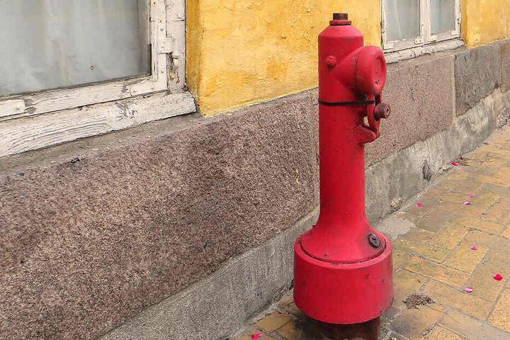 Am Küchwaldring haben Diebe einen Hydrant mitgehen lassen. (Symbolbild)