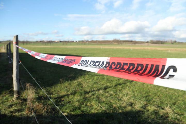 Ein Lehrling fand die Babyleiche auf diesem Feld bei Niederau. Der Säugling war in der Dezemberkälte erfroren.