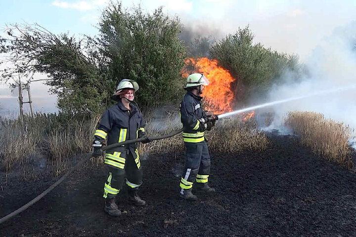 Durch den Wind änderte sich mehrfach die Richtung der Flammen, die Feuerwehrleute drohten von dem Flammenmeer eingekreist zu werden.