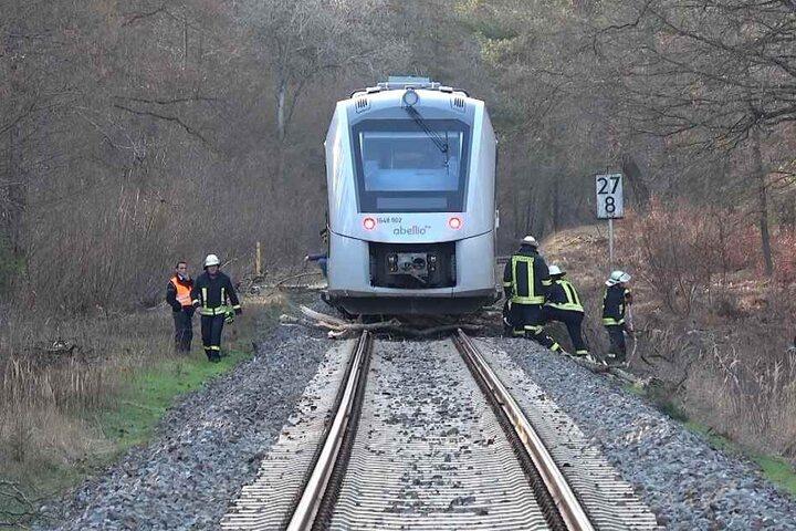 Kurz nach einer Kurve war die Abellio-Bahn gegen den Baum gekracht.