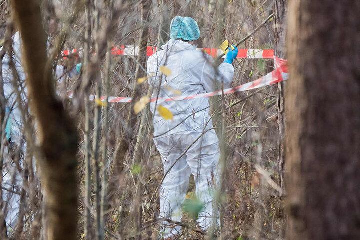 Mitarbeiter der Spurensicherung der Polizei sicherten Spuren im Wald.