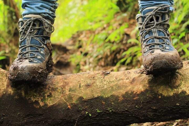 Mit Wanderschuhen und -rucksack ging der Mann in den Wald spazieren. (Symbolbild)