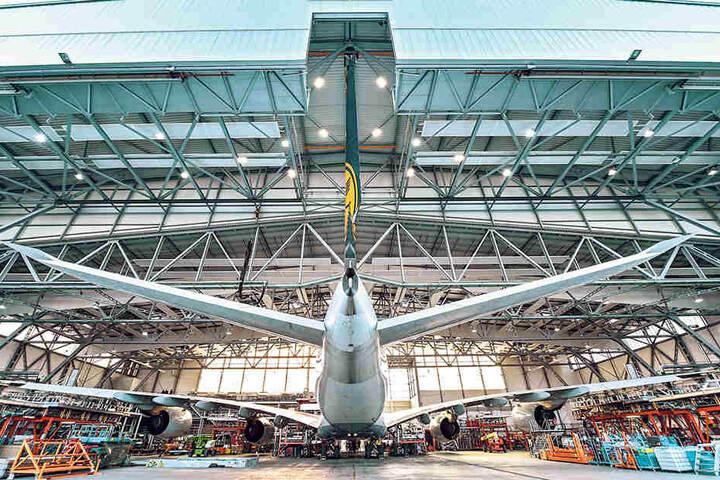 Der Riesenvogel wurde rückwärts aus dem riesigen Hangar der Elbeflugzeugwerke geschoben.