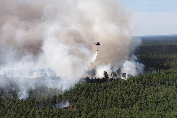 Mittlerweile brennen 100 Hektar Waldfläche.