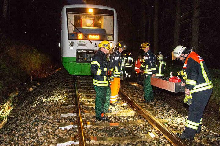 Der Zug krachte mit über 100 Stundenkilometern gegen den Baum.