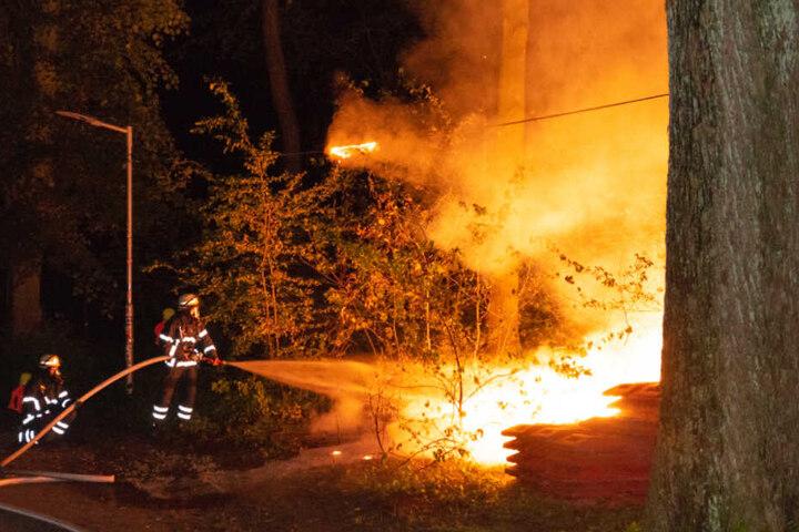 Die Feuerwehr löschte den Brand, konnte aber nicht verhindern, dass eine Stromleitung Feuer fing.