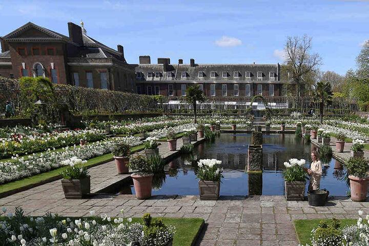 Insgesamt stehen der königlichen Familie im Palast 775 Zimmer zur Verfügung.
