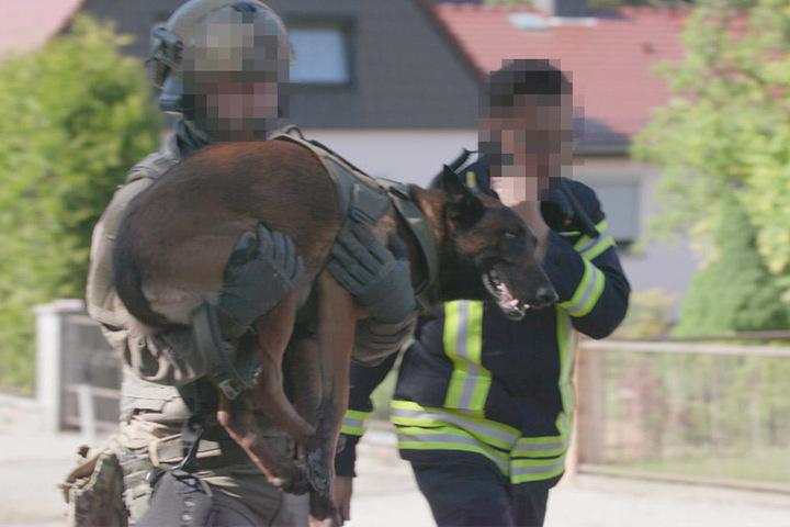 Neben einem GSG9-Beamten wurde auch ein Polizeihund verletzt.