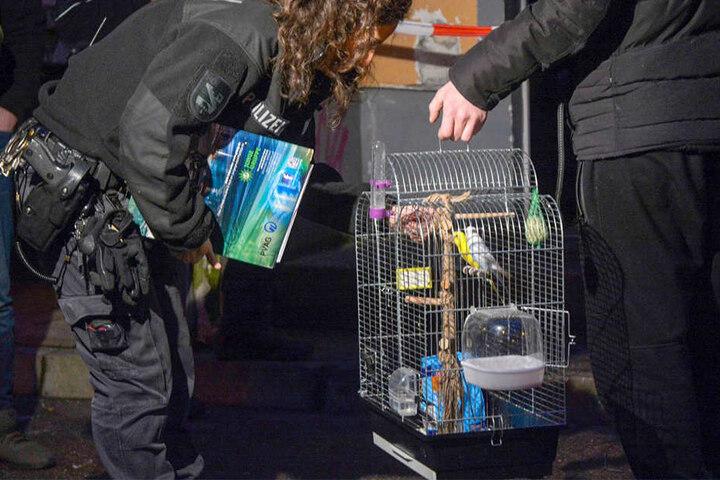 Die Vögel Pfeffi und Wiedu wurden aus der Rauch-Hölle gerettet.