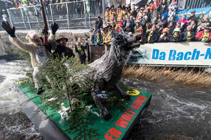 """Narren fahren mit ihren """"Zuberbooten"""" letztes Jahr auf der 400 Meter langen Strecke auf der Schiltach."""