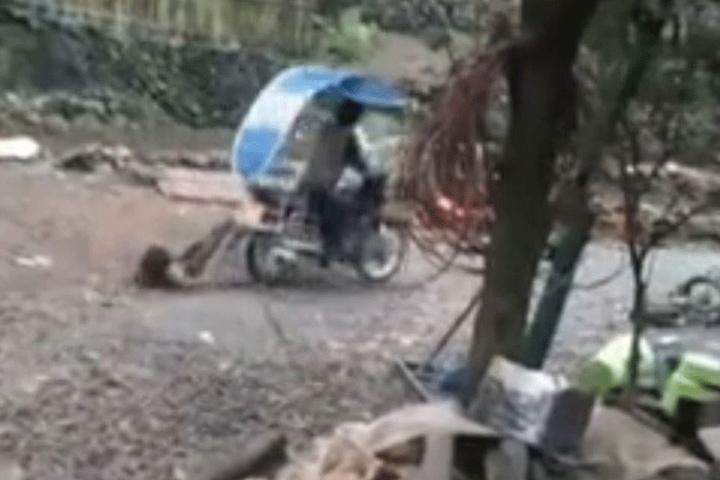 Dann zieht der Mann die Kleine an einem Schotterweg fahrend hinter sich her!