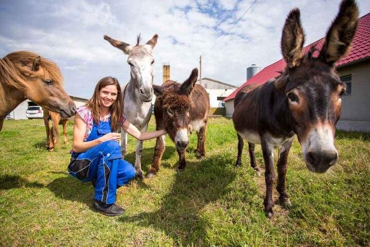Mit seinem Streichelzoo ist der Bauernhof zum Ausflugsziel für Schulklassen und Kita-Gruppen geworden.