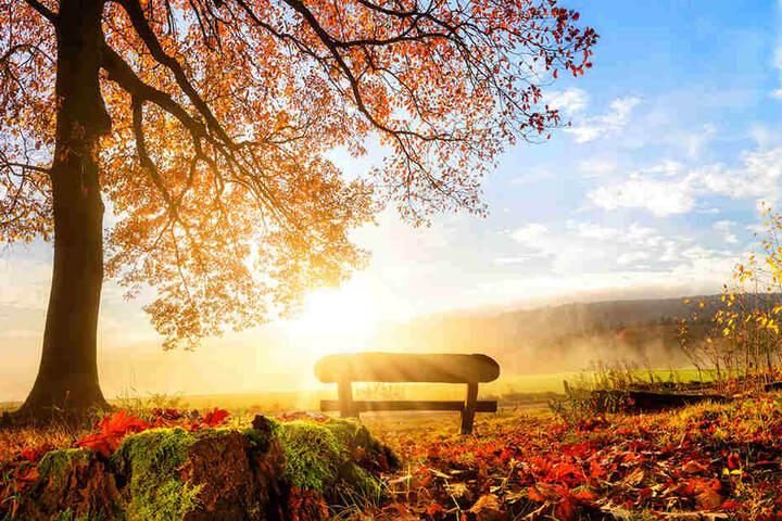 Kommt jetzt endlich der goldene Herbst?