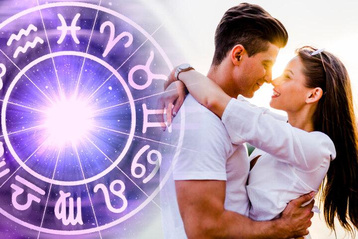 Horoskop schütze frau single heute