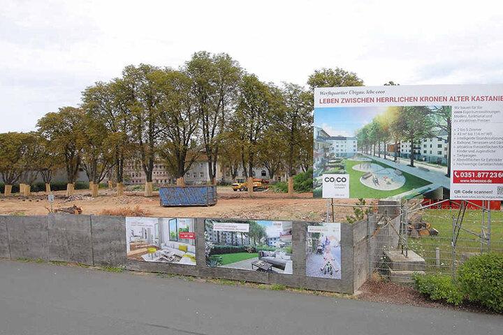 In Übigau planen zwei Firmen auf einem alten Kasernenareal über 200  Wohnungen.