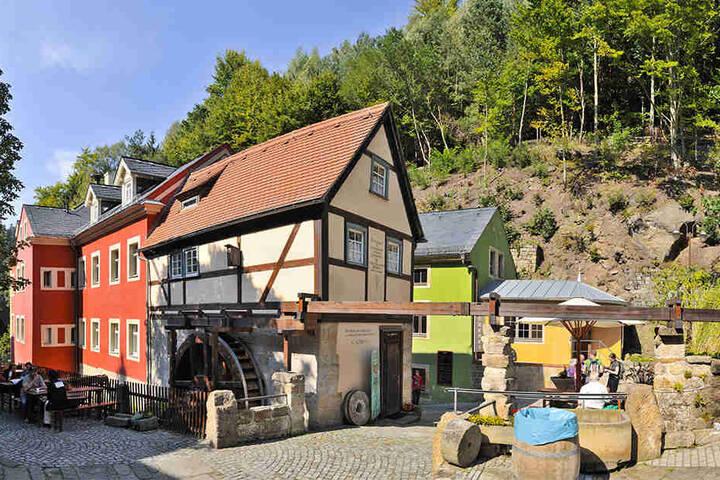 Seit Montag ist die 140-Seelen-Gemeinde zum schönsten Dorf Sachsen gewählt.