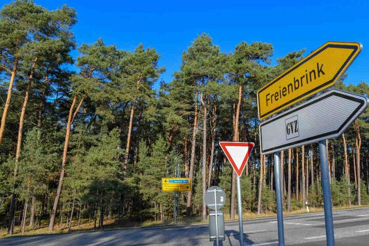 Ein Waldgebiet grenzt an eine Straße am Güterverkehrszentrum (GVZ) Freienbrink in der Gemeinde Grünheide östlich von Berlin.