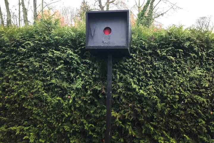 Ein Kölner hatte einen Starenkasten aus Holz gebastelt und vor sein Haus gestellt, um Autofahrer dazu zu bringen, langsamer zu fahren.