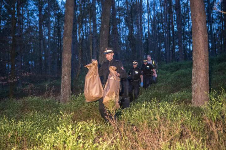 Polizeibeamte sichern Spuren in dem Hamburger Waldgebiet.