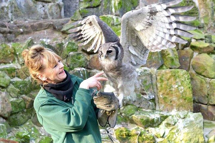 """Pflegerin Heike Thiergen (57) mit """"Tajo"""" - auch der Milchuhu ist im Ferienprogramm dabei."""
