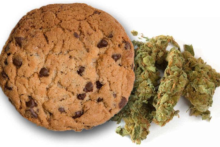 Ein sogenannter Hasch-Keks kann für Tiere lebensgefährlich sein, da sie ganz anders auf solche Substanzen reagieren.
