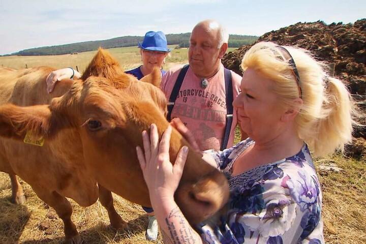 Mit den Kühen verstand sich Maggie trotz ihres Outfits prächtig.