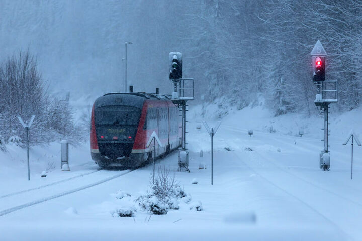 Schnee ist nicht das Problem: Umgestürzte Bäume behindern die Erzgebirgsbahn.