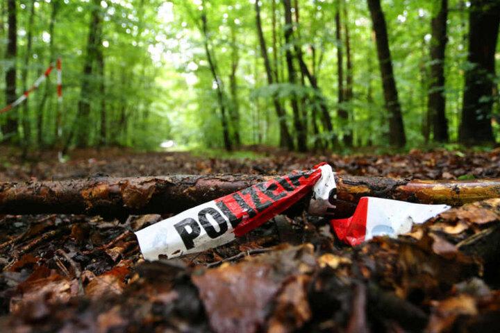 Der Täter verscharrte den Körper der damals 22-Jährigen in einem Waldstück (Symbolfoto).