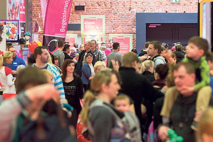 """Das Erlwein-Forum war gestern gut gefüllt: """"Vergangenes Jahr kamen 6000  Besucher"""", sagte Jana Niemann (32) vom Veranstalter."""