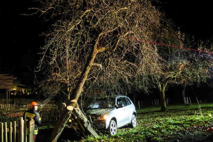 Der BMW krachte so heftig gegen einen Baum, dass dieser zerbrach.