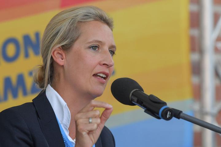 Auch eine Spende an Alice Weidel könnte der Partei noch Probleme machen.
