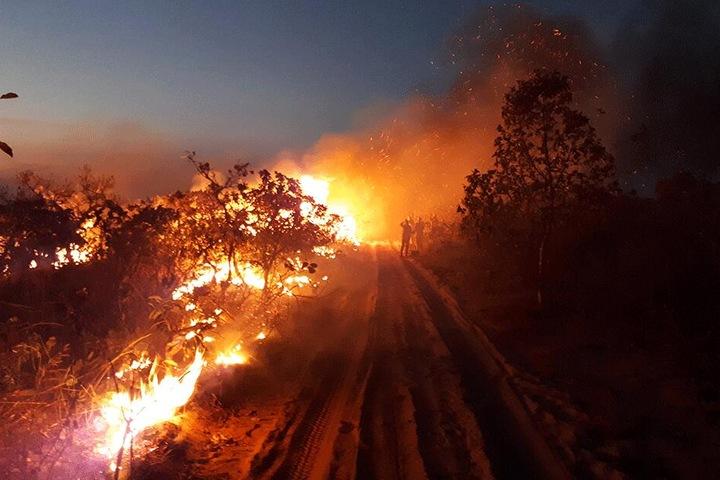 Berlin und Paris uneinig: Bundesregierung gegen Blockade wegen Amazonas-Bränden
