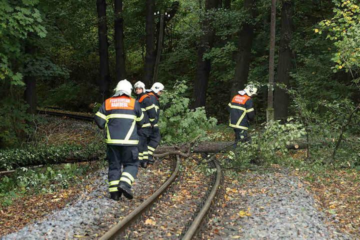 Der Baum wurde kontrolliert auf die Gleise gekippt.